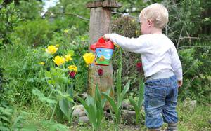 8 Best Plants for Gardening with Kids