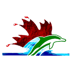REGINA OPTIMIST DOLPHINS SWIM CLUB