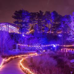 Winter Lights at the Rock Garden