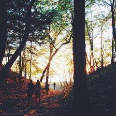 Twilight Guided Hike