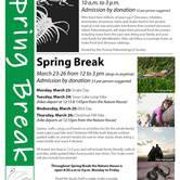 Spring Break at Swan Lake!