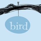Bird School of Music