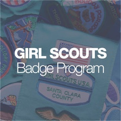 Girl Scouts: Brownies Letterboxer Badge