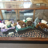 Teddies and Toys at the Sidney Museum
