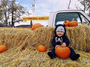 Harvest Pumpkin Hunts