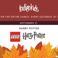 Make it an Indigo Weekend: Lego Harry Potter