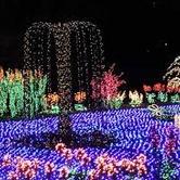 23rd Annual Garden d'Lights
