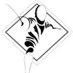 Bayou City Fencing Academy