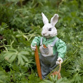 VIU's Milner Gardens & Woodland Bunny Trail
