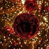 Flatland 4x4 Enchanted Christmas!