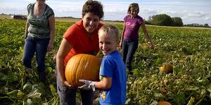 Fall-o-ween Harvest Fest