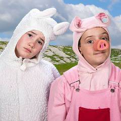 Babe the Sheep Pig - An Autism/Sensory Friendly Performance