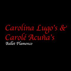 Carolina Lugo's Flameco Dance Company and Academy