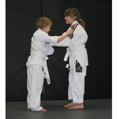 Ronin Mixed Martial Arts