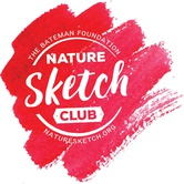 Adult NatureSketch