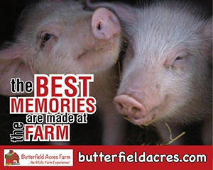 Amazing Animal Farm Day Camps - July 30 to Aug 3
