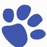 SUMMER CAMPS ( Sacramento Zoo) : BLUE