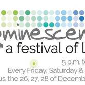 Zoominescence; a Festival of Light (at the Edmonton Valley Zoo)
