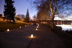 Greenlake Pathway of Lights