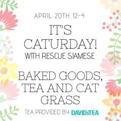 Caturday Bake Sale