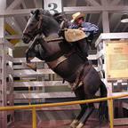 American Cowboy Museum