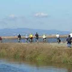 Bike Ride Tour at Don Edwards SFB National Wildlife Refuge