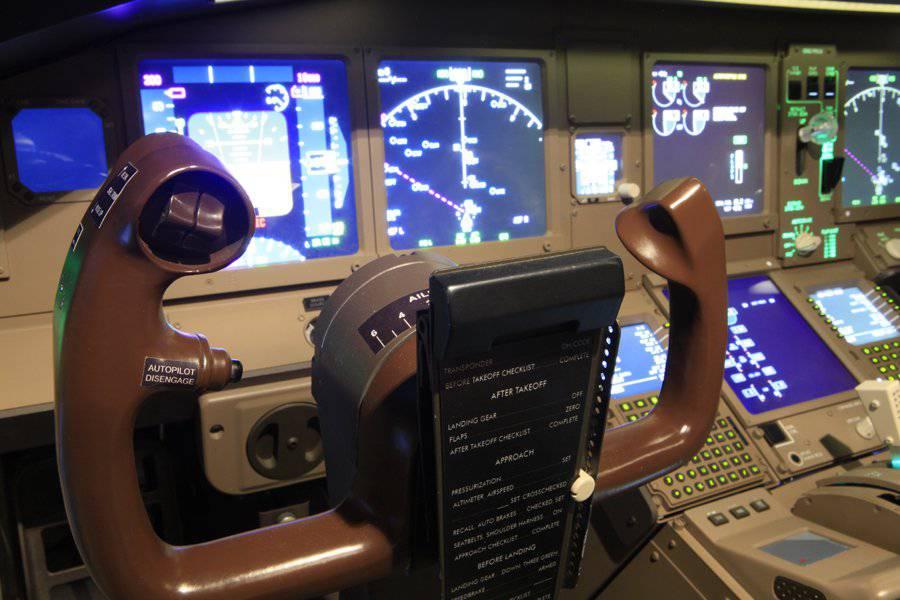 Immersive Amateur Flight Simulators-5914