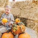 2019 Pumpkin Maze