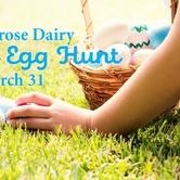 56th Alpenrose Dairy Easter Egg Hunt