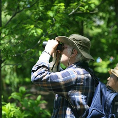 Bird Walk with Steve Romaine, Bird Enthusiast and Naturalist
