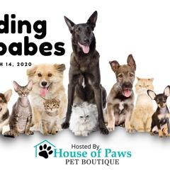 Feeding Furbabes Pet Expo 2020