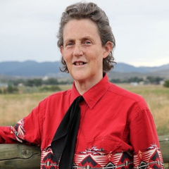 Temple Grandin – Developing Individuals who have Different Minds