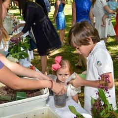 Flora Fest