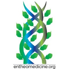 The Revolutionary Healing, Creative and Cognitive Potential of Entheogenic and Psychedelic Medicines