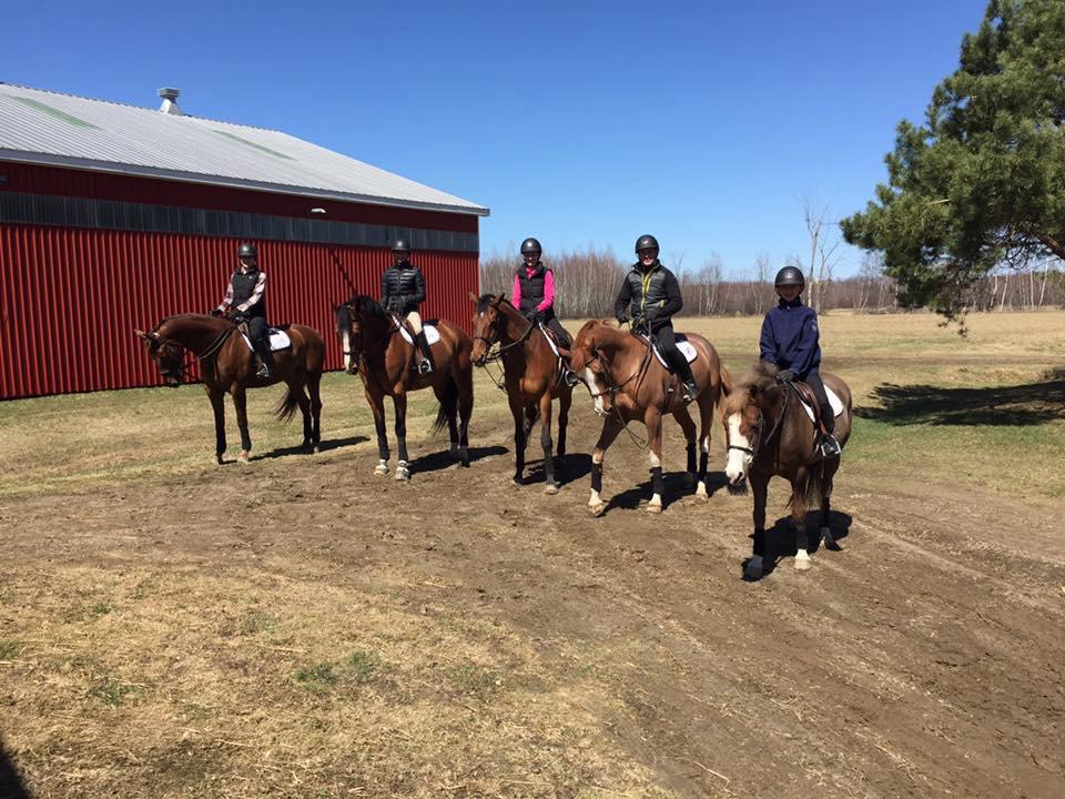 Taylor Brooks Equestrian Wynbrook Farm