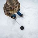 Blackstrap Learn to Ice-Fish
