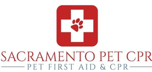 Pet CPR & First Aid