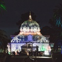 Holiday Lights at SF Conservatory of Flowers - Night Bloom