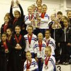 Stars Gymnastics Training Center
