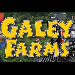 Galey's Corn Maze, Market and Railway