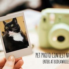 Pet Photo Contest (closes May 31)