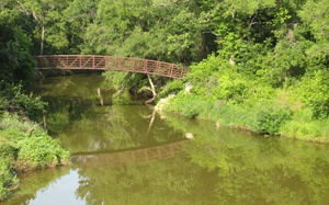 Top 8 Family Friendly Hikes in Dallas