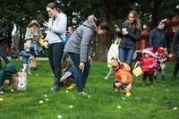 Egg-Stravaganza in North PDX