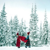 The Peak of Christmas at Grouse Mountain