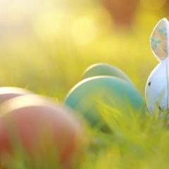 NAIT Alumni & Family Easter Egg Hunt