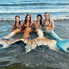 Halifax Mermaids Visit Hope for Wildlife for Open House