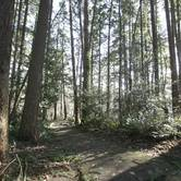 Family Volunteer Opportunity: Restore Natural Areas at Beaverton Parks