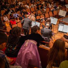 Music for Families: Meet the Orchestra