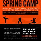 Queen City Martial Arts Spring Camp