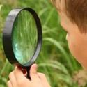 Become a Behavioural Detective